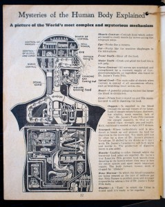 At least as early as 1934 Dr. Jayne's used the Mensch als Industriepalast  in its almanac.
